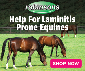 Robinsons Equestrian Help For Laminitis Prone Equines