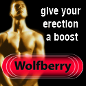 Wolfberry Erection Stimulant
