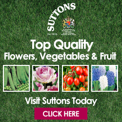 Top Quality Plants, Veg and Fruit from Suttons Seeds