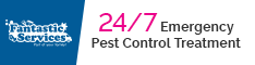 24/7 Emergency Pest Control Treatment