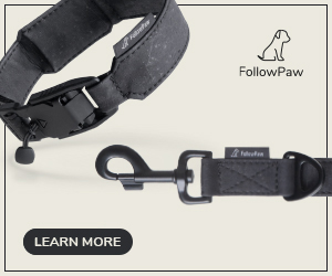 link The dog accessory | For well-being and safety of our best friends
