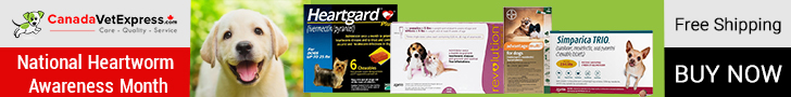 Best Deals on National Heartworm Awareness Month. Apply Promo Code- HWAM15 to Get of 15% on Heartgar