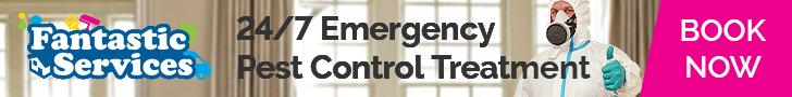 24/7 Emergency Pest Control Treatment